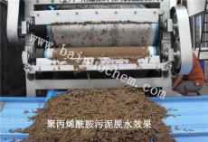 生活污水污泥脱水处理剂 阳离子聚丙烯酰胺