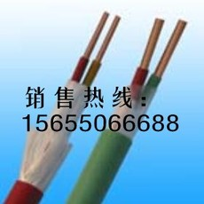 FF22氟塑料电缆 FF32电缆生产厂家