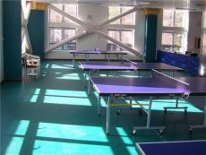 柳州pvc商用地板南寧pvc運動地板幼兒園PVC