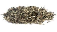 石家莊沙棘茶 甘肅艾康沙棘 沙棘茶價格