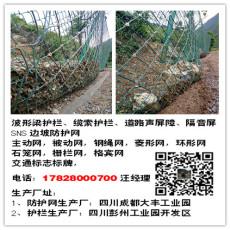 四川RX-025 RX-050 RX-075边坡防护网厂家