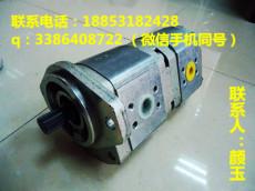 萨澳齿轮泵进口液压泵SNU1NN/3 2SNU1NN/3 8