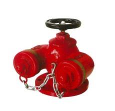 供應多用式地上 地下水泵接合器