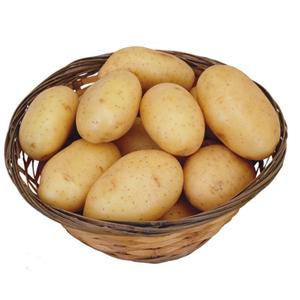 心农园土豆免费配送到家