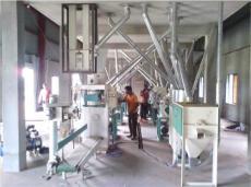 贝斯德面粉机专注高端缩短与强企差距