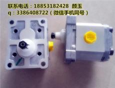 齒輪泵 SNP2NN/014RN01DAP1E6E5NNNN/NNNNN