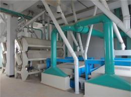 国外西非用户洽谈30吨面粉机