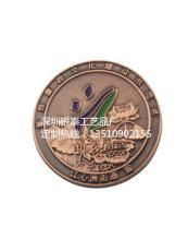南京文化建設師范點紀念幣 高品質紀念章