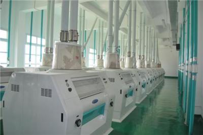 面粉机械贝斯德打造名优产品