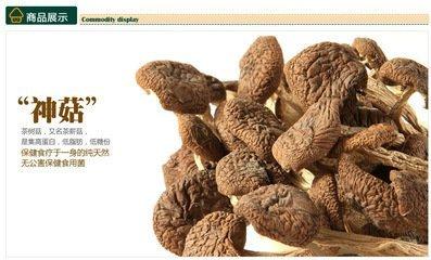 上海长宁区那有莲子 茶树菇批发 价格多少