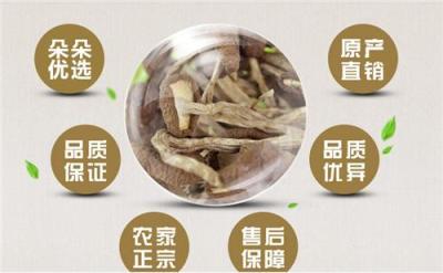 上海徐汇有莲子茶树菇买批发 价格多少