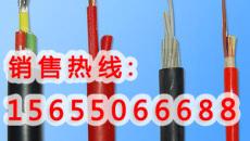 CJP85/SC CJP86/SC CJPJ95/SC船用電纜