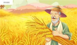 深圳肥料包装设计 种子包装设计公司