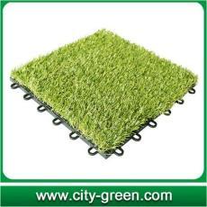 廣州綠城 拼塊草 CGT拼塊草價格