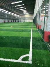 天津足球场地草坪 标准足球草坪施工