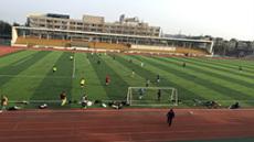 天津专业建人造草坪足球场 足球场施工过程