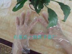 透明聚乙烯PE手套