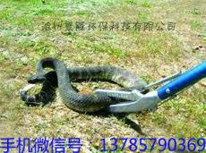 长效连续抓蛇杆 捕蛇钩