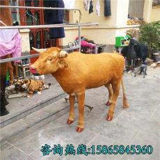 仿真水牛真皮黃牛標本1比1奶牛模型鴻順工藝