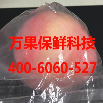 草莓保鲜袋批发/水果保鲜袋厂家/水果保鲜盒